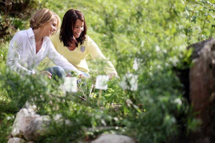 Zwei Frauen unterhalten sich über Kräuter
