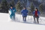 Eine Gruppe tut Schneeschuhwandern.