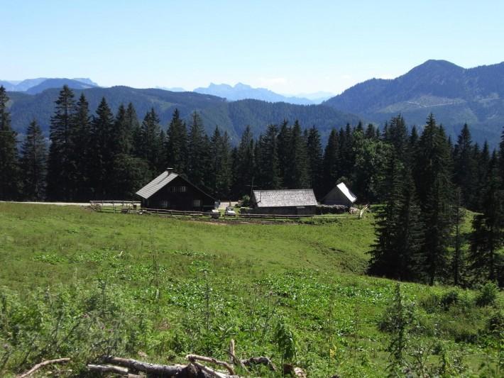 Eine schöne Landschaft mit grüner Wiese.