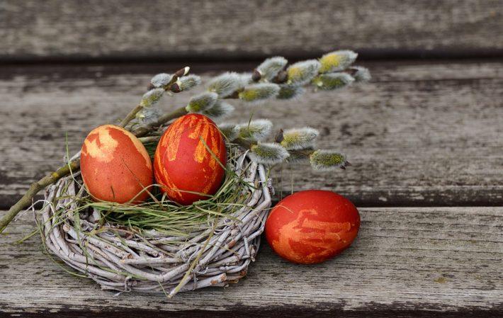 Rote Ostereier im Nest auf Holzhintergrund
